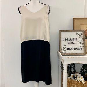 Eileen Fisher Color Block Silk Sheath Dress Sz S